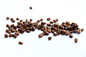 coffee beans on white background with copy space for text