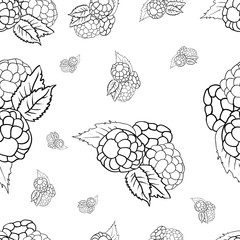 Seamless pattern, floral berry ornament, hand drawn illustration