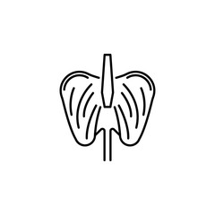 human organ diaphragm outline icon. Signs and symbols can be used for web, logo, mobile app, UI, UX