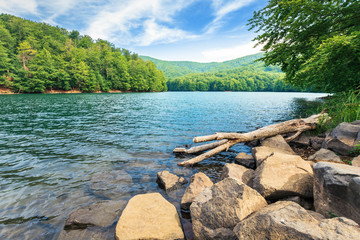 beautiful summer scenery near the mountain lake. beech forest and rocks on the shore. sunny weather and crystal clear water
