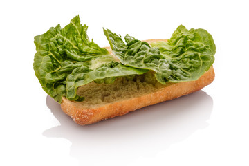 Halbes Brötchen mit Salat Blattsalat