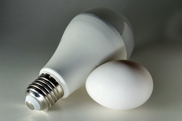 White lightbulb and egg on white background close up