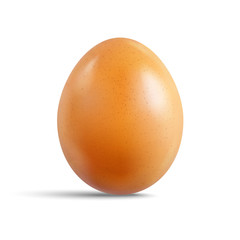 Fresh raw chicken brown egg isolated on white background. Realistic vector 3d illustration.