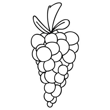 Grapes Cartoon Stock Photos And Royalty Free Images Vectors And Illustrations Adobe Stock