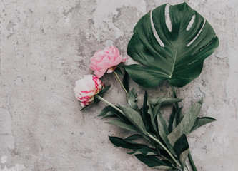 Flat lay pink peonies on stone background with monstera leaf. Creative floral image. Happy mother's day. International women day. Greeting card mockup