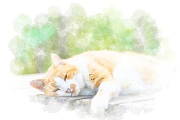 眠る猫 Cat. Illustration of watercolor painting style.