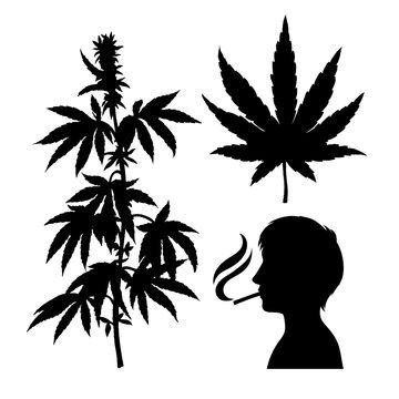 Silhouettes of hemp. Smoking person. Cannabis leaf. Vector marijuana twig