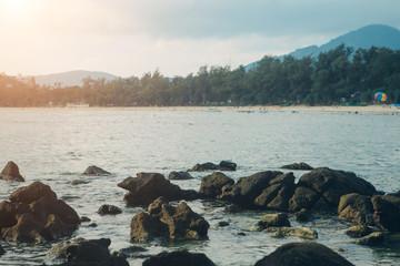 wildlife: sea view, waves and coastal reefs