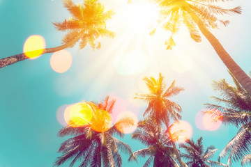 Tropical palm tree with colorful bokeh sun light on sunset sky cloud abstract background. Wall mural