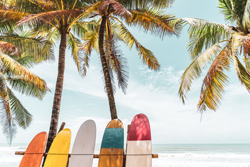 Surfboard and palm tree on beach background.