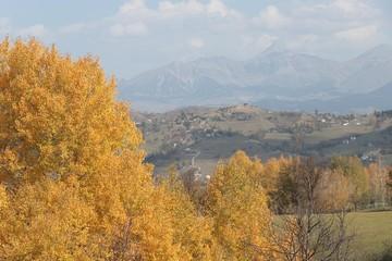 Autumn forest and village photos/savsat/artvin turkey