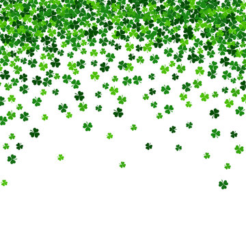 vector illustration with green shamrocks on white background
