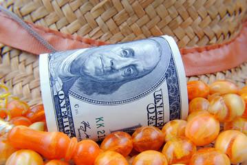 US dollar close up