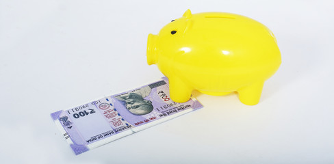 Picture of piggy bank with new Indian currency. Isolated on the white background.