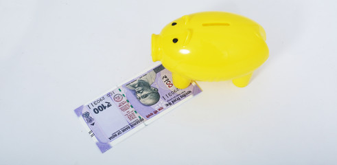 Portrait of piggy bank with new Indian currency. Isolated on the white background.