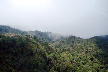 Landscape of a mountain ridge covered by a green forest under the sun's rays against the background of the gray rain clouds approaching it.