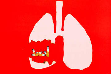 burning paper of lung on red background with cigarette, smoking kills concept