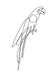Parrot bird one line drawing