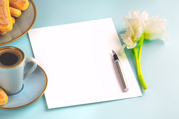 A sheet of white paper is empty on a blue background with an ink pen and a white tulip. Copy space.