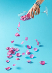 Woman's hand with watch is pouring petals of pink rose from glass on a blue background. Place for text.