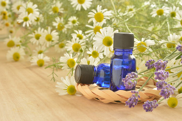 Aroma oil with chamomile flowers