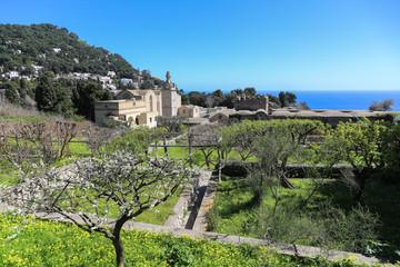 Capri Amalfi Küste: Blühende und duftende Gärten vor dem Kloster San Giacomo auf der Insel Capri
