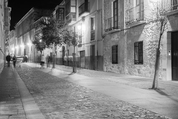 ZAMORA, SPAIN - NOVEMBER 1, 2016: Night view of one of the streets of the city.