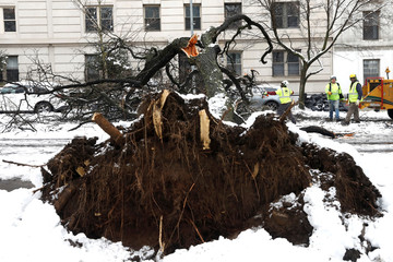 Workers cut away a tree that fell across Riverside Drive during a snow storm in upper Manhattan in New York