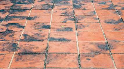 Wall Mural - view  tile floor on The Ground for Street Road