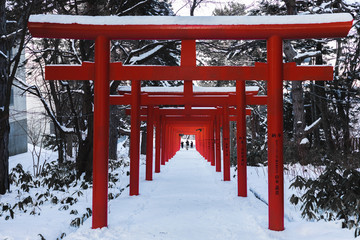 Tourists admiring the structure of Fushimi Inari Taisha Shrine in Sapporo Japan. This shot was taken in winter. Red Torii gates covered with snow.