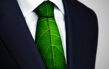 Ecology concept, business man with green leaf tie Wall mural