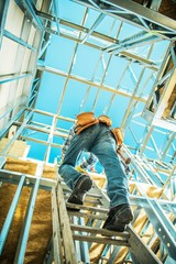 Construction Worker on a Ladder
