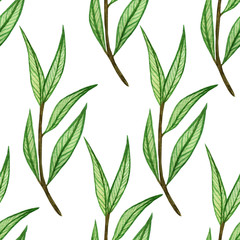 watercolor pattern with leaves