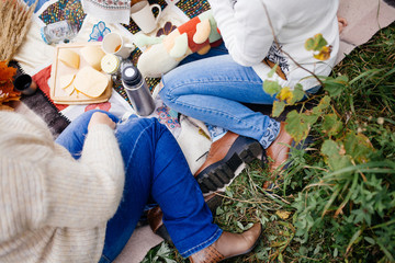 Picnic on the nature with vegetables, fruits and sandwiches
