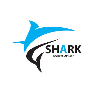 vector shark logo with blue color
