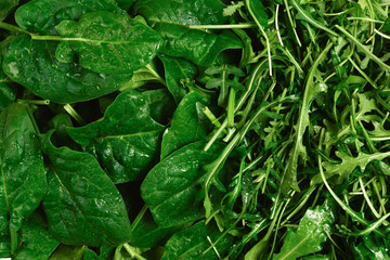 Fresh leaves of arugula and spinach as background.
