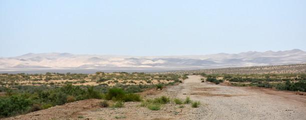 Road through beautiful Kyzykorum desert in Uzbekistan