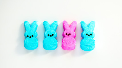 diversity-3 turquoise and one pink marshmallow Easter bunnies isolated on white
