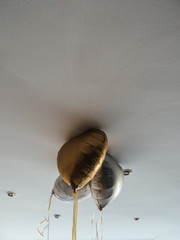 Golden and white heart shaped balloons on the roof of a house