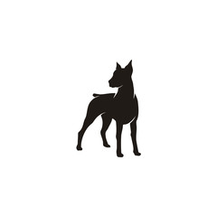 Silhouette of Standing Doberman Pinscher Dog