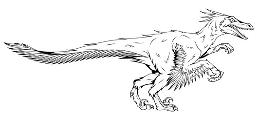 velociraptor with feathers, fossil dinosaur, prehistoric animals, vector graphic to design
