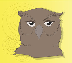 owl portrait vector illustration, color background