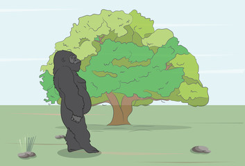 vector illustration of a gorilla on the wild