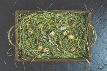 Quail eggs on the hay and willow branches