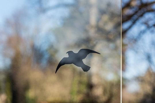 sticker of a bird against bird strikes at a window