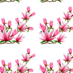 Pattern of blossoming magnolia on a white background.