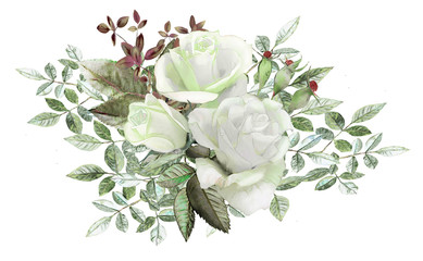 watercolor drawing of a branch with leaves and flowers. Botanical illustrations. Roses.