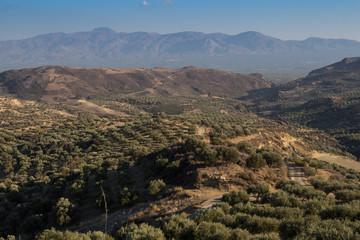 Landscape of agricultura central Crete