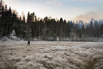Autumn landscape. Early winter. The beauty of the winter forest. Natural background. Smoke in the forest. Frost on the trees.