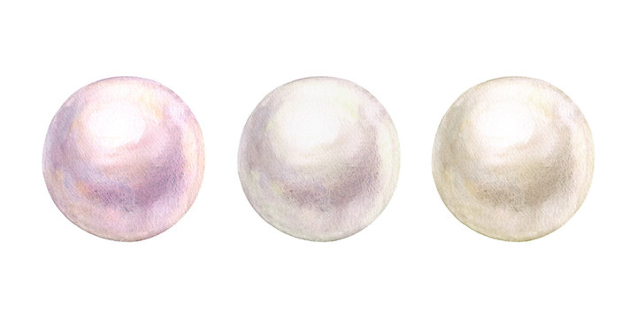 Pearl set watercolor shiny natural sea nacreous isolated on white background.